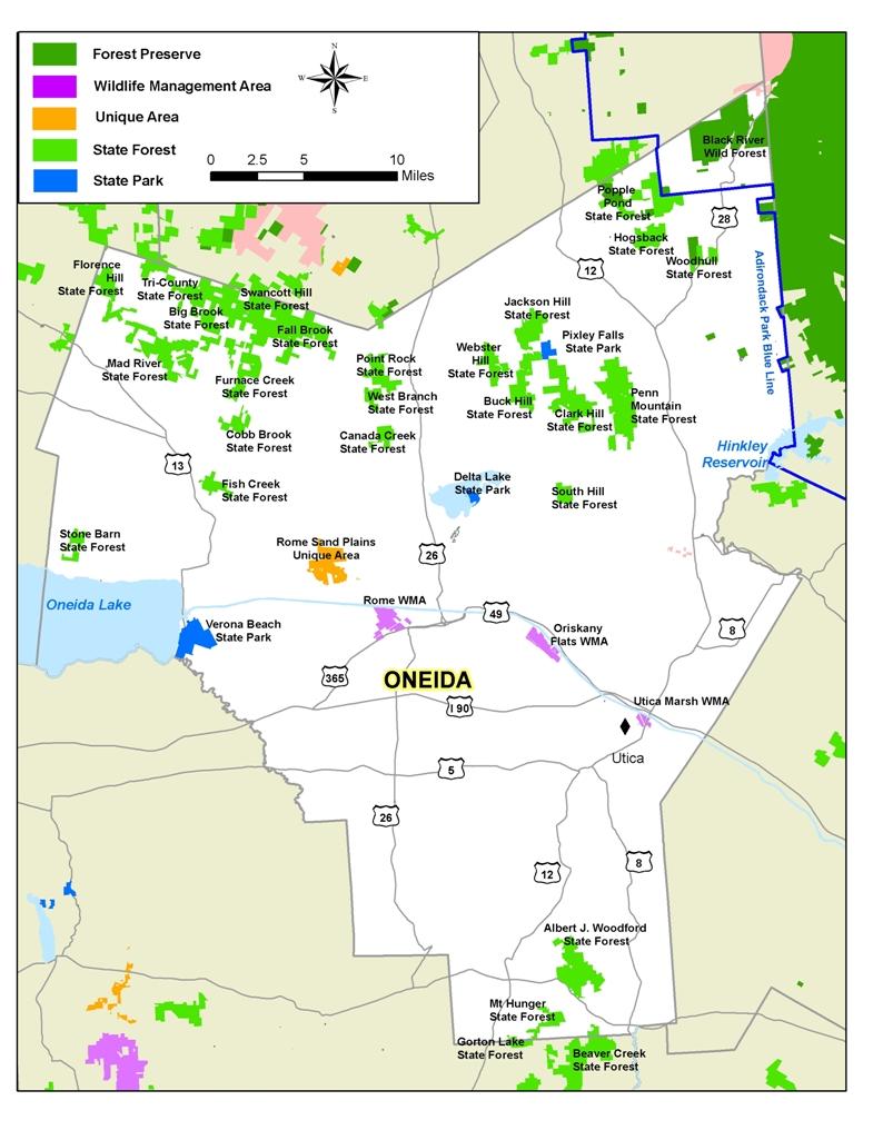 New york oneida county oriskany falls - Map Of State Lands In Oneida County